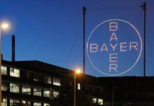 Bayer ha elegido nueva agencia para sus marcas
